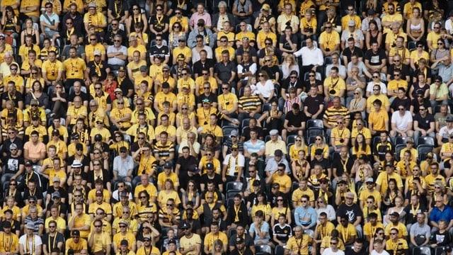 Aufnahme des gelb-schwarzen Menschenmeers: Das Publikum im Stadion des Schweizermeisters.