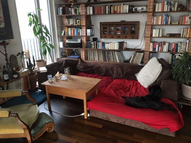 Sofa mit braunen und roten Kissen. Dahinter ein grosses Bücherregal.