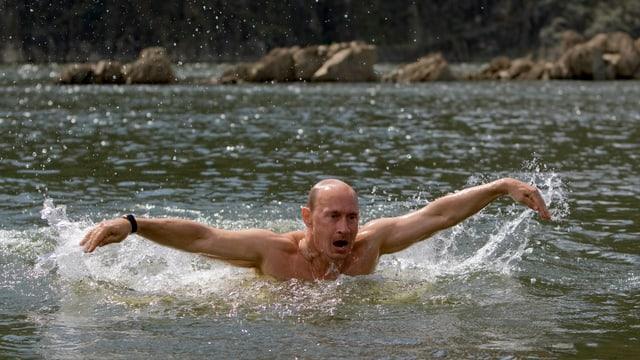 Putin schwimmt.