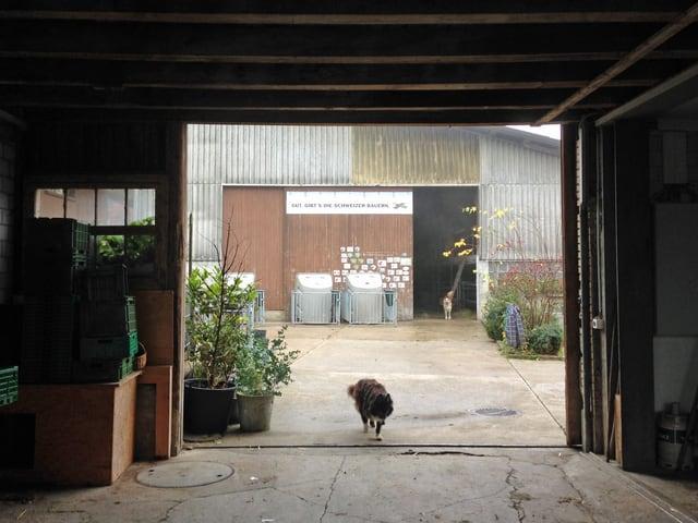 Blick vom Durchgang des Wohnhauses zum Kuhstall