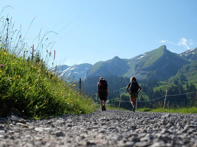 Zwei Wanderinnen auf dem Wanderweg, im Hintergund die Berge.