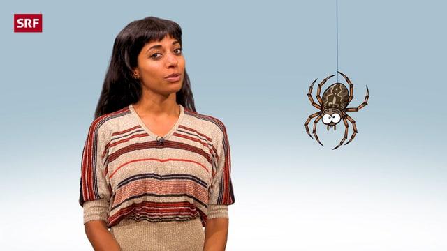 Video «Wozu sind Spinnen gut? | Clip und klar! - Dein Erklärvideo» abspielen