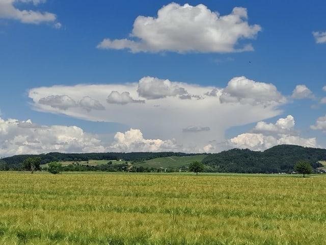 Eine Gewitterwolke am Horizont, über der Region Birrfeld