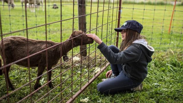 Ein Mädchen mit Baseballmütze streichelt ein Schaf durch ein Gitter.