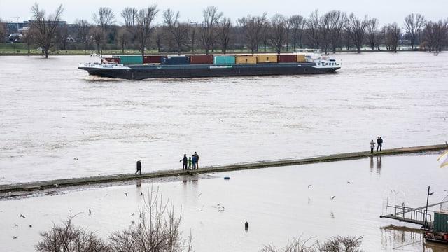 Containerschiff auf Rhein, überschwemmtes Ufer.