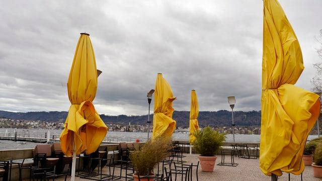Auf einer Terrasse am Zürichsee trotzen ein paar zusammengebundene, gelbe Sonneschirme dem Wind.