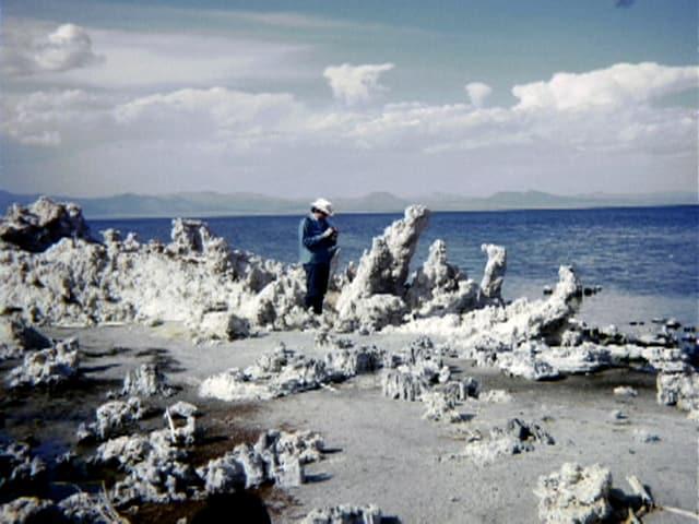 Am Ufer eines Salzsees wachsen Salzfiguren in Menschengrösse empor.