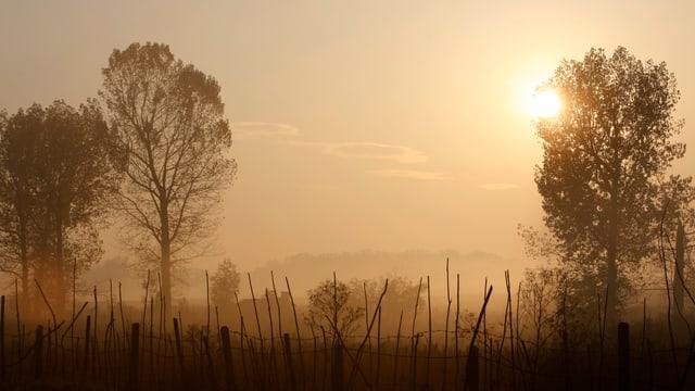 Ackerland in der Morgendämmerung in der Nähe von Sofia
