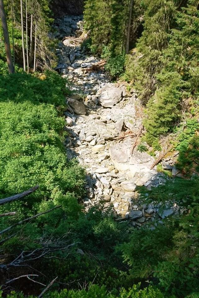 Trockenes Bachbett im Wald.