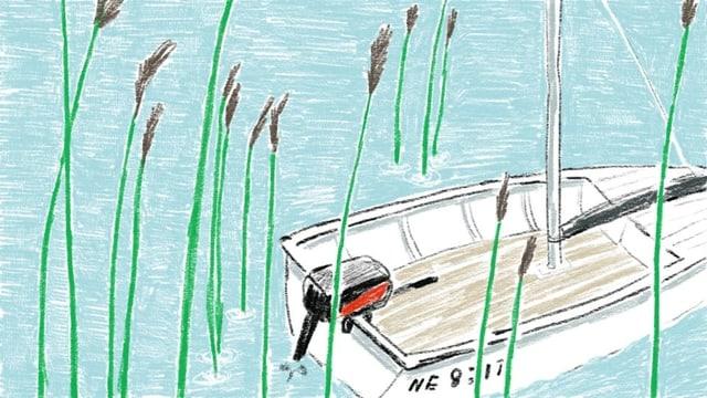 Ein Boot auf dem Wasser zwischen Schilf.