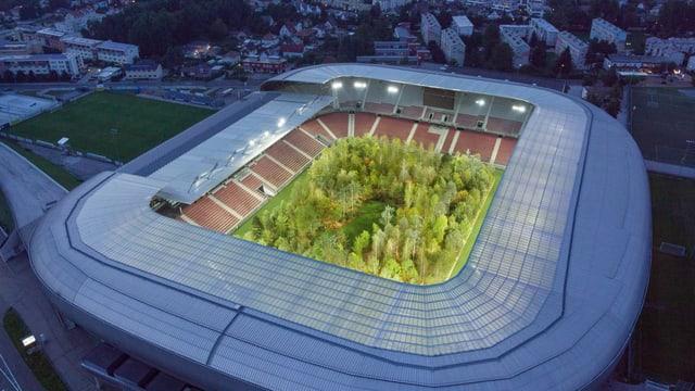 Das Bild eines Stadions, in dem innendrin Bäume gepflanzt wurden.
