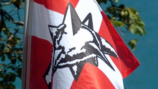 Fahne mit Pnos-Logo