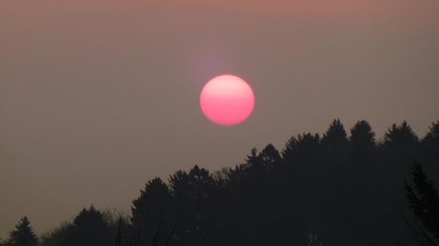 Rote Sonne tief über dem Horizont.