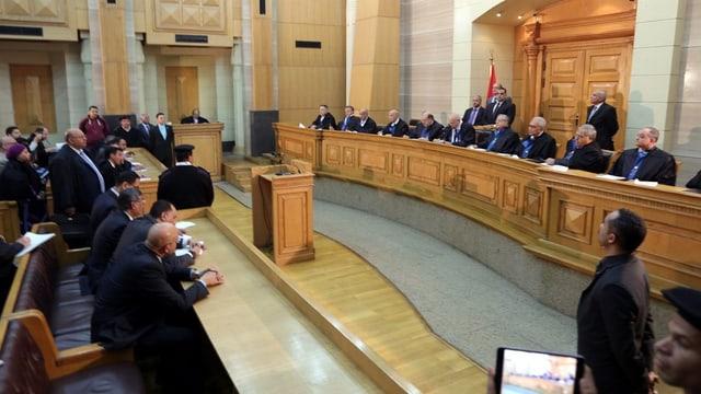 dretgira constituziunala egipta