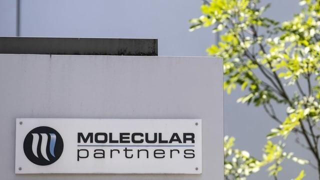 Gutes Geschäft für Molecular Partners