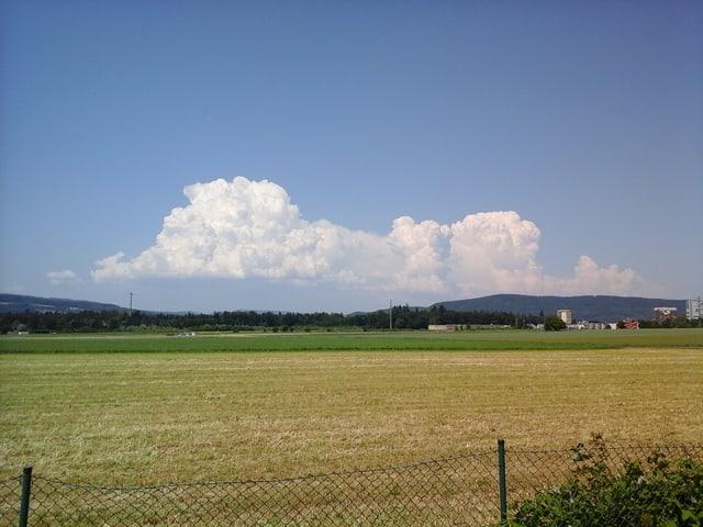 Quellwolken über Feld