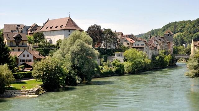 Sommerliche Aufnahme der Stadt Brugg am Aareufer.