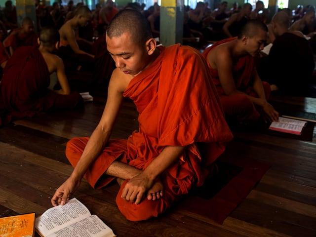 Ein buddhistischer Mönch sitzt im Schneidersitz und liest in einem Glaubenstext, im Hintergrund tun es ihm viele gleich.