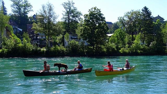 Kanus auf der Aare bei Bern
