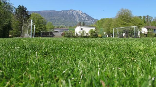 Rasen des Sportplatzes aus der Froschperspektive, links und rechts steht je ein Fussballtor.