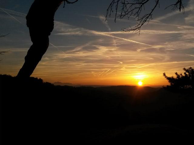Am Horizont geht die Sonne unter. Die Kondensstreifen und Cirren leuchten in der Abendsonne.