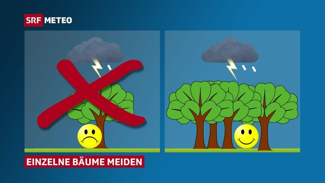 Piktogramm: links Mensch unter Baum, rechts Mensch im Wald.