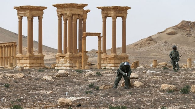 Experts da l'armada a Palmyra.