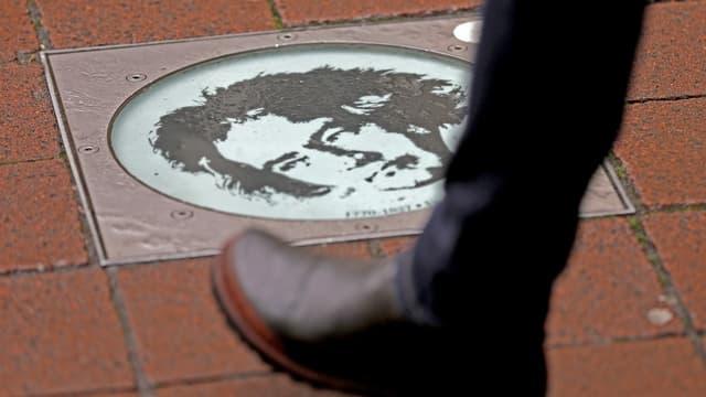 Auf einem brauen Plattenboden ist eine Foto von Ludwig van Beethoven montiert.