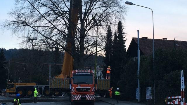 Baum neben Haus mit Lastwagen davor