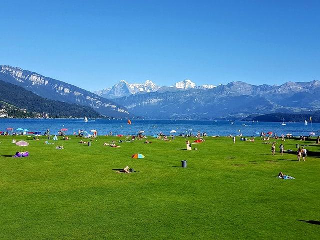 Grüne Liegewiese einer Badi mit vielen Besuchern. Dahinter der See und der stahlblaue Himmel.
