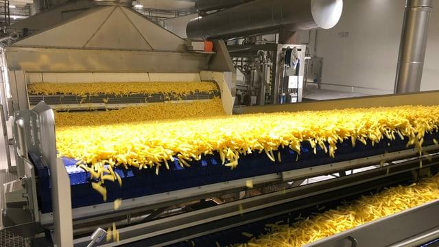 Pommes frites Fabrik