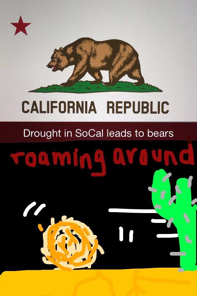 Flagge von Kalifornien und selbstgemaltes Bild