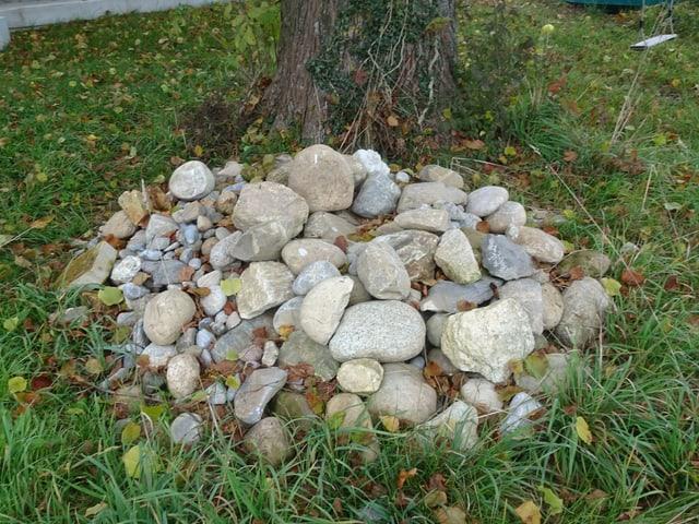 Steine in einem Garten
