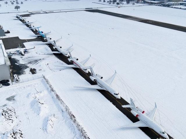 Aufgereihte Flugzeuge am Flugplatz Altenrhein