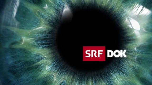 Dokumentarfilme und Reportagen: Keyvisual «DOK»