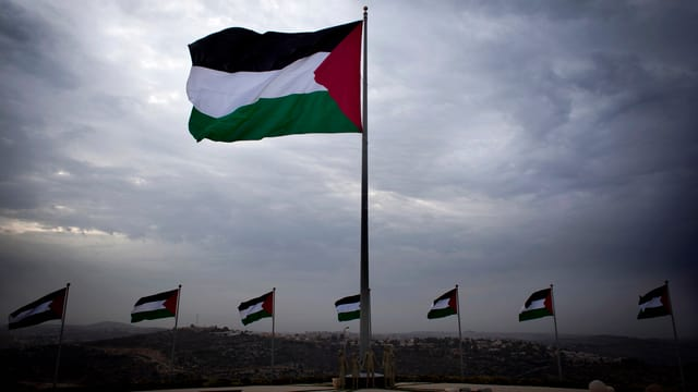 Palästinenserflaggen, eine gross im Vordergrund, viele weitere im Hintregrund.