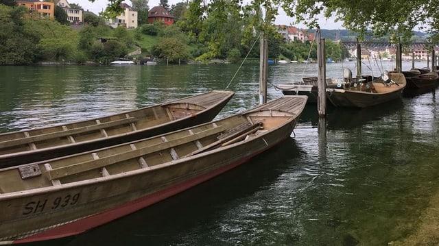 Motorlose Boote auf dem Rhein.