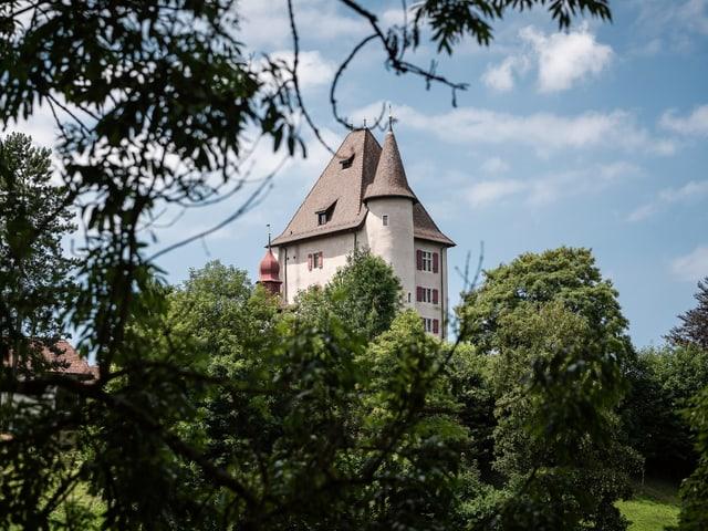 Ein Schloss hinter Bäumen.