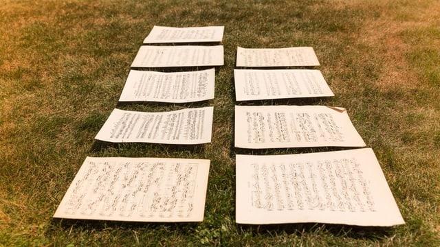 Auf einer Wiese liegen neun Notenblätter aufgereiht in zwei Reihen.