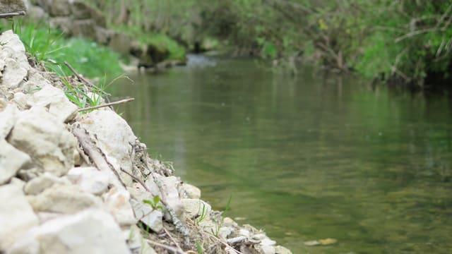 Kleiner Fluss mit Uferböschung