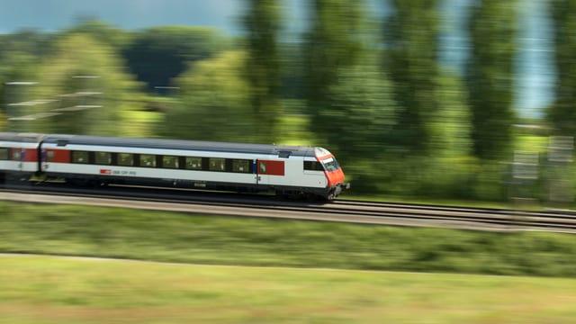 Ein Zug fährt durch eine grüne Landschaft, im Hintergrund ein See.