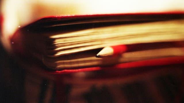Ein Bleistift in einem Buch eingeklemmt