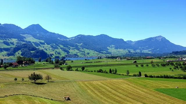 Blick über die Felder in Schwyz, dahinter die Rigi.