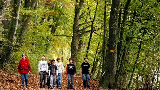 Kinder im Sihlwald