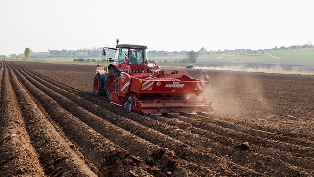 Ein Bauer pflügt sein Feld.