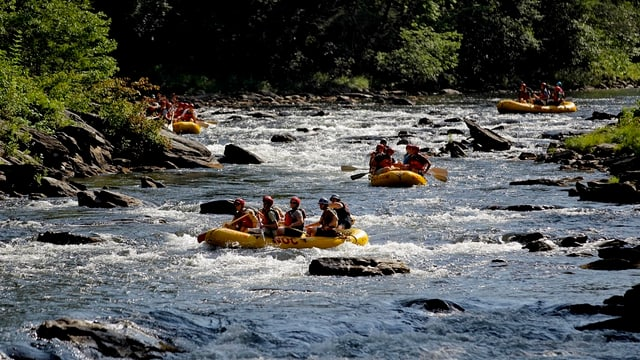 Drei gelbe Boote auf einem Fluss.