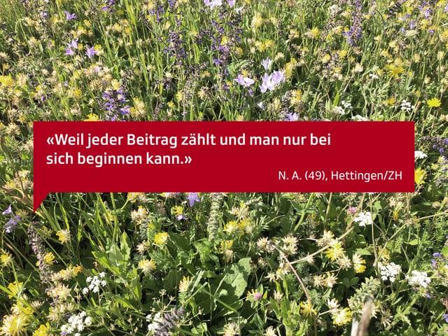 Weil jeder Beitrag zählt und man nur bei sich beginnen kann. N.A. 49, aus Hettingen/ZH