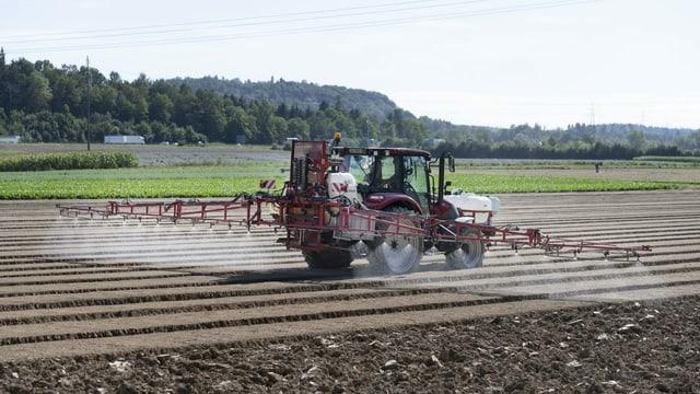 Pestizidinitiative – so argumetieren die Initianten
