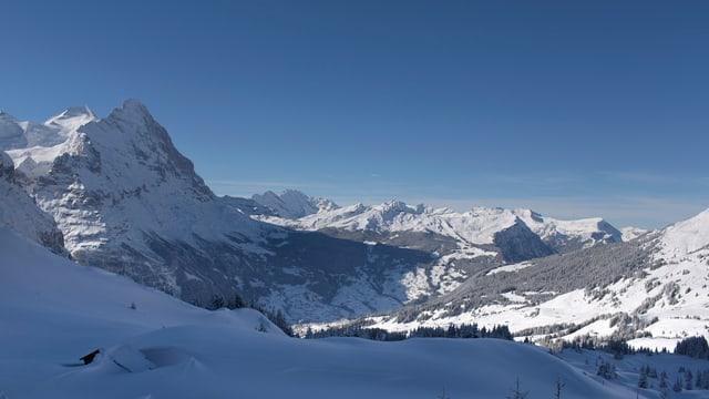 Blick auf Grindelwald und die Eigernordwand.