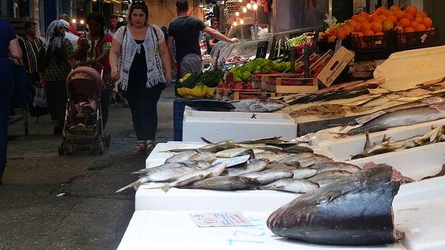Fische auf einer Auslage im Kapani-Markt.